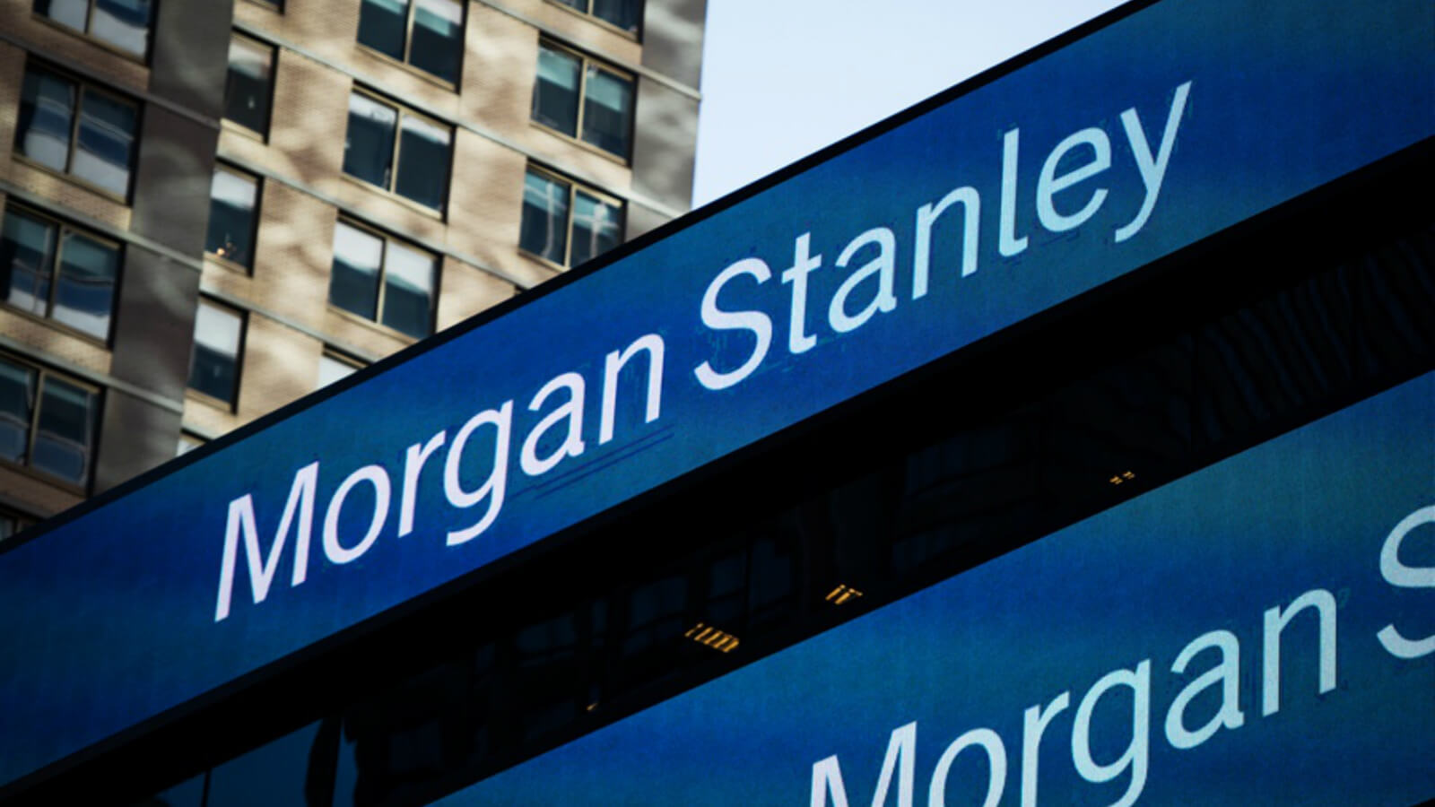 Morgan stanley report finds gender diverse boards win 1600x900