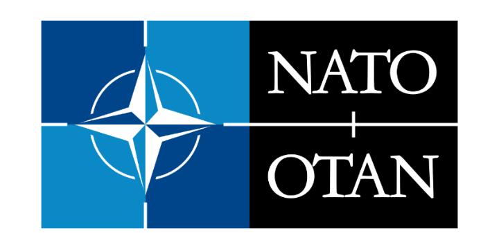 Nato otan logo white